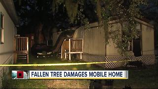 Tree falls on mobile home with pregnant woman and baby inside - Video
