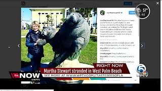 Martha Stewart stranded in Palm Beach - Video