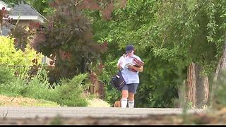 Boise mail carriers falling victim to dog attacks - Video