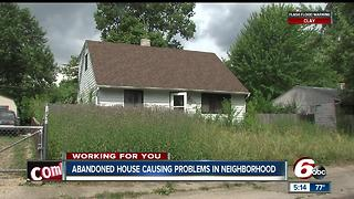 Abandoned house causing problems in neighborhood - Video