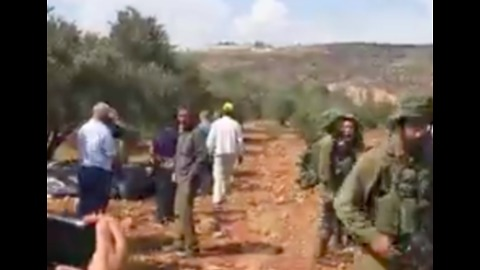 Olive Harvesters Confronted by IDF Soldiers Near al-Sawiya