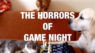 The Horrors of Game Night - Video