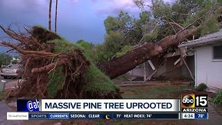 Crews working to clean up extensive storm damage in Phoenix - Video