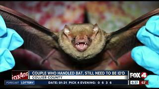 Collier County health officials still looking for couple who handled bats - Video