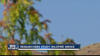 Researches study wildfire smoke - Video