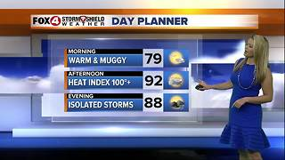 FORECAST: Hot and Humid with Isolated Storms - Video