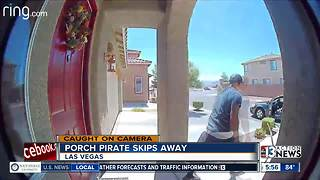 Porch pirate skips away happily