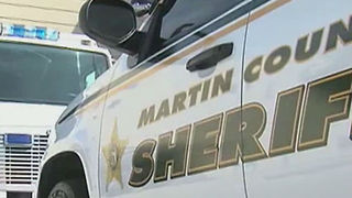 Car thieves working during daylight hours in Martin County - Video