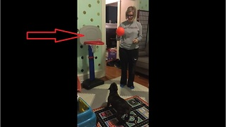 French Bulldog shows off impressive basketball skills - Video