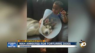Man arrested for brutally torturing dogs - Video