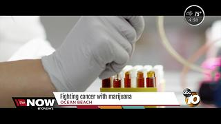Cancer patients receive free medical marijuana from San Diego company - Video