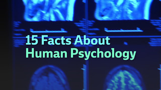 15 Facts About Human Psychology - Video