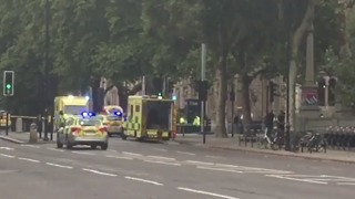 Multiple People Injured After Car Ploughs into Crowd Outside London Museum - Video