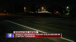 Police search for deadly hit-and-run driver in Clinton Township - Video