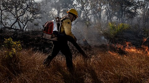 Wildfires In The Amazon Are Uniquely Difficult To Fight