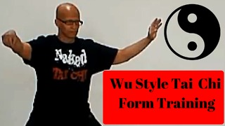 Wu Style Tai Chi Form Vlog 1 - Video