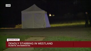 Deadly stabbing in Westland