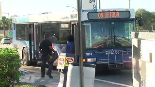 HART changing bus route in Seminole Heights | Digital Short - Video