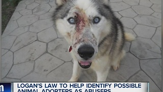 Logan's Law to help identify possible animal adopters as abusers - Video