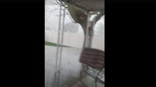 Strong Wind, Heavy Rain Batter Homes Across Xenia During Tornado-Warned Storm - Video