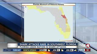Shark attacks rare in Southwest Florida - Video