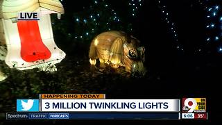 Zoo turns on lights for 35th annual Festival of Lights - Video