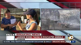 Mother, son rescue 22 horses from West Fire, Lakeside Rodeo takes in evacuated animals - Video