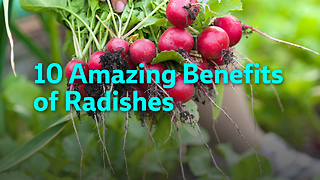 10 Amazing Benefits  of Radishes - Video
