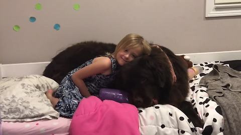 Little girl and her doggy have the best nighttime routine