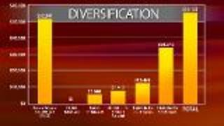 Investing - Diversity to Reduce Risks - Video