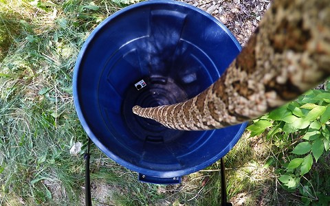 GoPro footage captures large snake's amazing escape