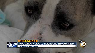 Dog attack leaves neighbors traumatized - Video