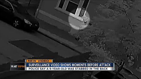 VIDEO: Machete attack