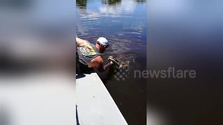 Fearless tour guide kisses wild alligator - Video