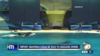 Report: SeaWorld could be sold to Legoland owner - Video