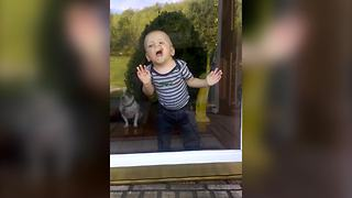 Hilarious Baby Boy Makes Funny Faces - Video
