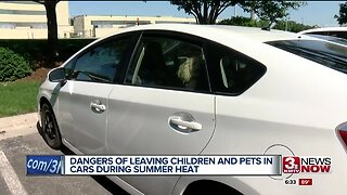 The Dangers of Leaving Children and Pets in Cars During Extreme Heat