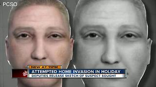 Sketch released of attempted home invasion armed robbery suspect in Holiday - Video