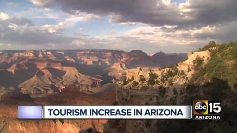 Top stories: Dog food warning, Tourism increase in Arizona, Flooding at Havasupai