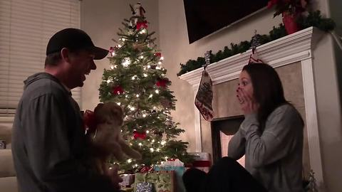 Man allergic to dogs surprises wife with puppy for Christmas