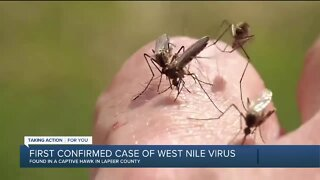 First confirmed case of West Nile Virus in Michigan