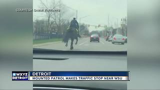 Mounted Wayne State University police officer pulls over driver in viral video - Video