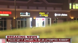 Smoke shop clerk fatally shoots teen in apparent attempted robbery - Video