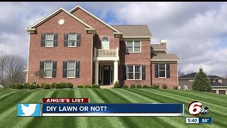 Angie's List: DIY Lawn or Not? - Video