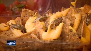 Wisconsin State Fair debuts WonderWheel, cricket nachos