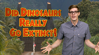 Are Dinosaurs Extinct?