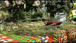 SOUTH AFRICA - Cape Town - Flower Show Design (Video) (wCQ)
