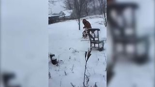 Dog Leaves Lady Stranded In The Cold - Video