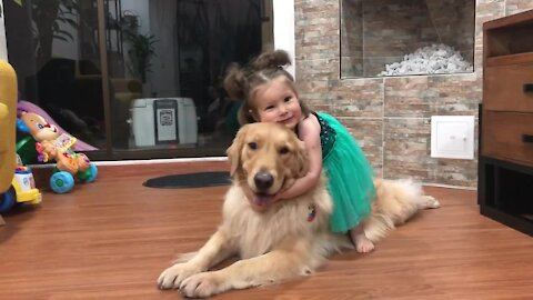 Loving toddler & sweet Golden Retriever share hugs and kisses