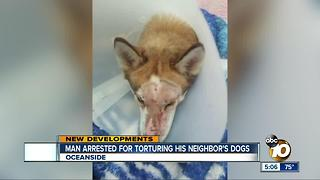 Man arrested for torturing his neighbor's dog - Video